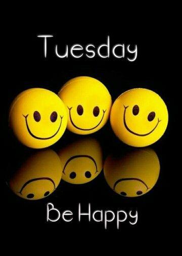 happy tuesday funny meme - photo #17
