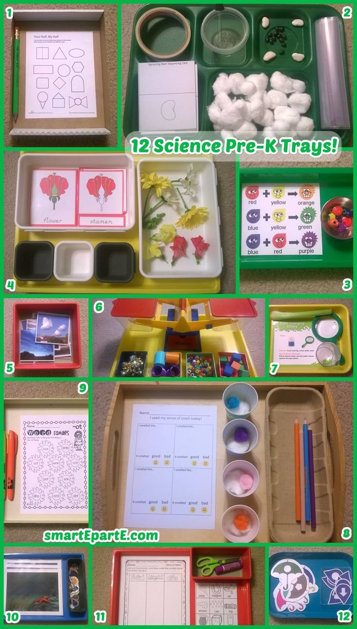 12 Science Preschool Trays! We dissect flowers, test our sense of smell, and sprout beans!