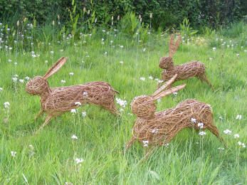 Sussex Willow Hares - Gallery of Dominic Parrette's work