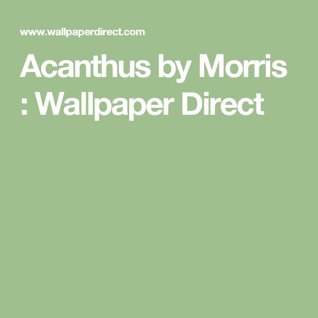 Acanthus by Morris : Wallpaper Direct