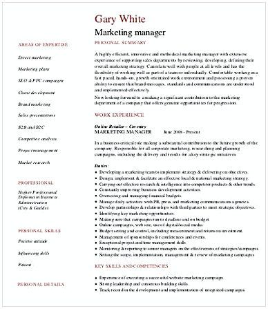 The 25+ best Marketing resume ideas on Pinterest Creative cv - marketing manager resume sample