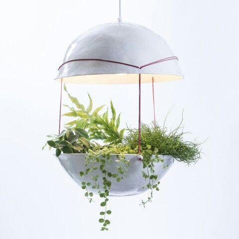 Grote plantenlamp nr5