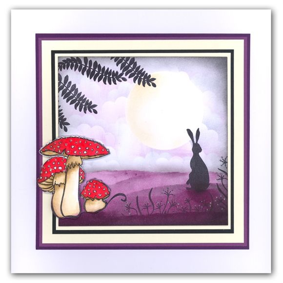 Toadstool and the Hare