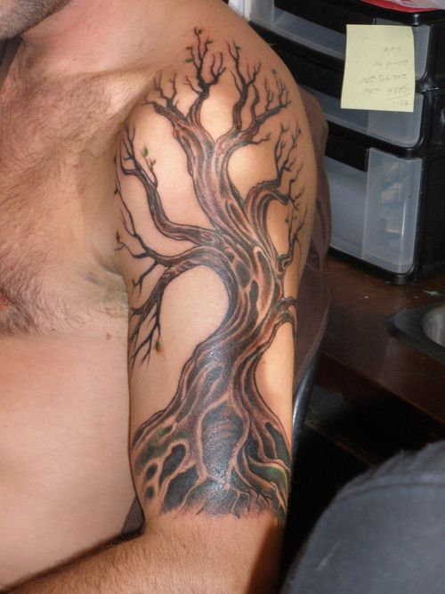 Tree Tattoos On Arm | Tree Tattoos Designs Picture 68