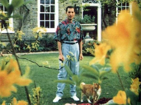 Freddie Mercury's Last Photo, taken in 1991, before dying of bronchial pneumonia resulting from AIDS.