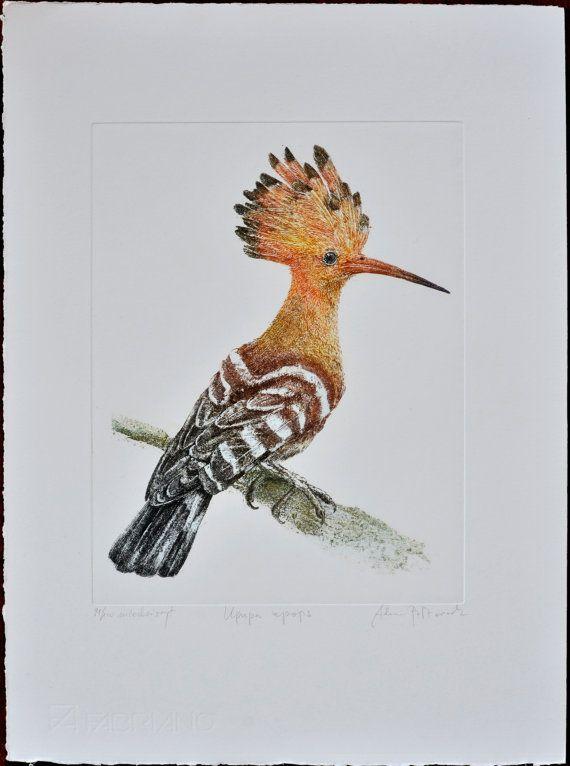 Hoopoe Upupa epops  handmade copper-plate by AtelierPoltorak