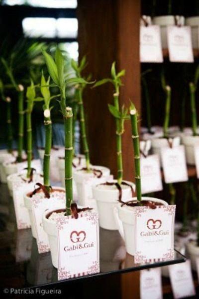 Plantinha como lembrancinha de casamento