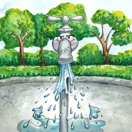 Little Girls and Little Boys learn about Saving Water - written by Ralph Ratshitanga, illustrated by Julie Sneeden