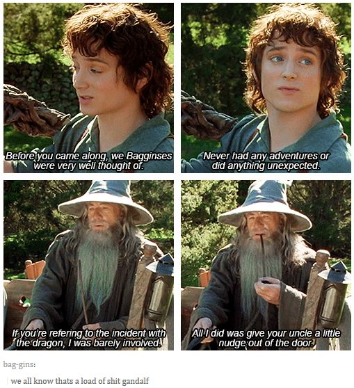 "When Gandalf got called out on his bullshit. | Literally Just A Bunch Of Really Funny ""Lord Of The Rings"" Tumblr Posts"