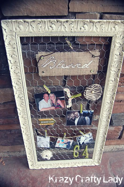 frame repainted with chicken wire. Might be a good way to display our photos by the photobooth.