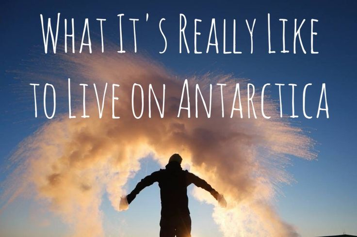 Sex, Booze and Penguins: Life on Antarctica