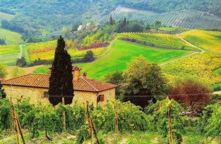 Nieopodal San Gimignano