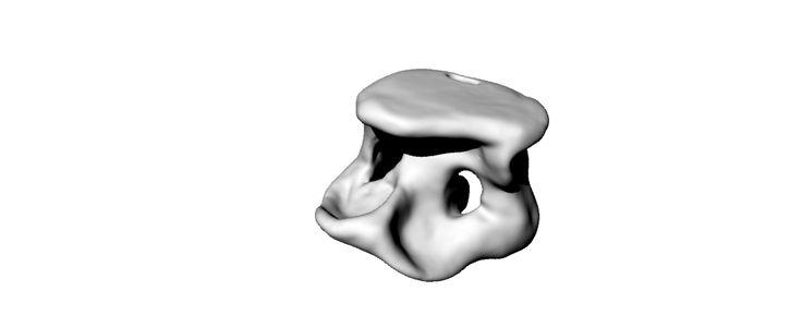 3D modelleme #rhino