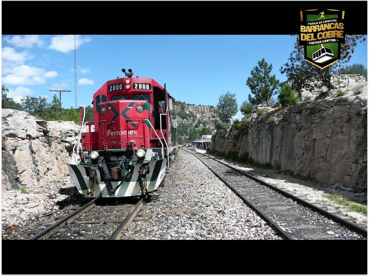 BARRANCAS DEL COBRE te dice. Ven y recorre en el único tren de pasajeros en México, El viaje inicia en Los Mochis y ofrece 2 tipos de servicio: Primera Express y Clase Económica, ambos con servicios para un viaje cómodo. www.chihuahua.gob.mx/turismoweb