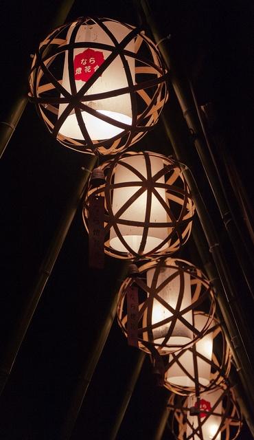 奈良灯花会, via Flickr. --------- #japan #japanese