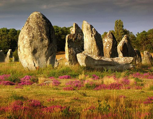 Standing stones at Carnac, Morbihan. Brittany.