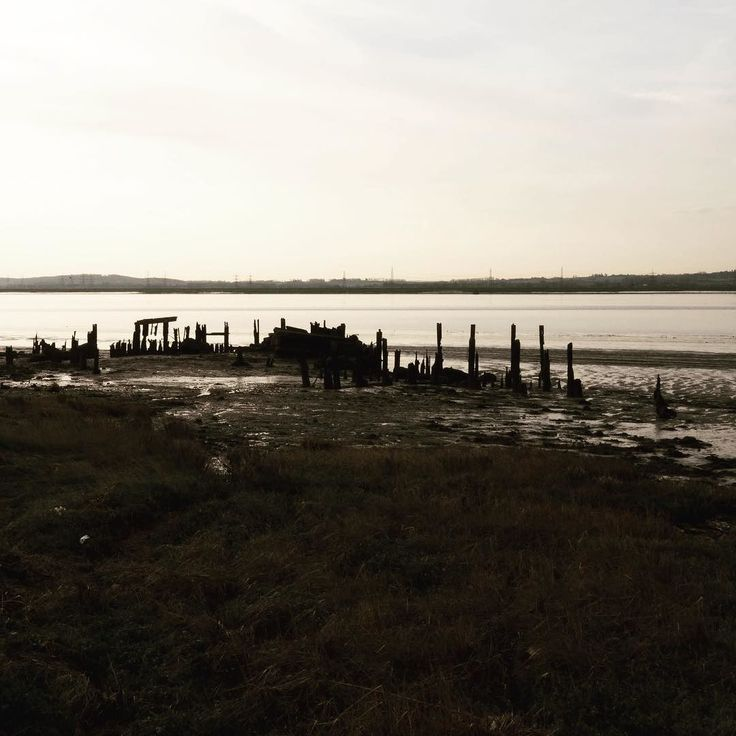Day 2: favourite view #aprillove2017 this is one of my favourite places to wonder with buster the dog. It is coalhouse fort in tilbury. The remains of this wooden structure fascinate me I love how it changes as the tides ebb and flow. The fort is a SSSI - a site of specific scientific interest because the mud flats support a wide range of wildlife much of which is rare or no longer commonly found in the U.K.  I love how raw this place is. It is on the estuary of the Thames. Very much the…