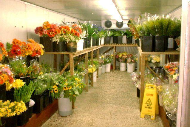florist shop interiors | http://www.mostphotos.com/761033/flower-shop-interior