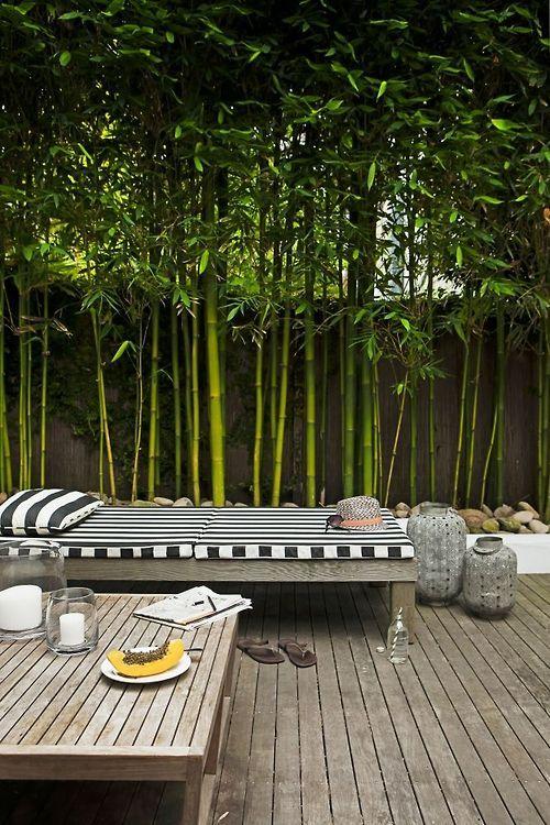 Wood bamboo outdoor
