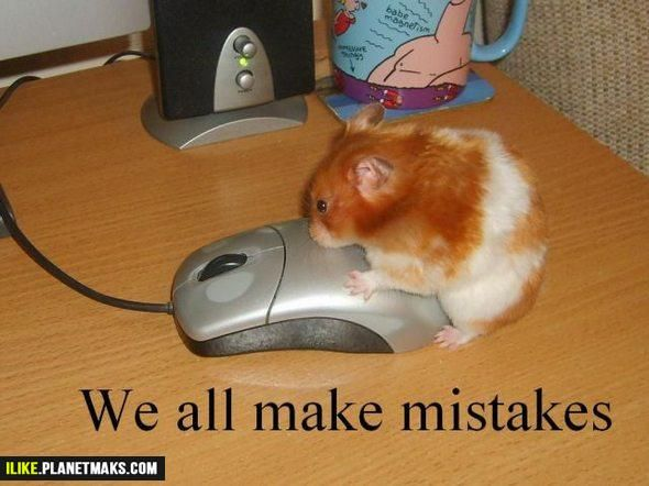 Pin by F. Laura Coelho on Funny things | Funny mouse ...