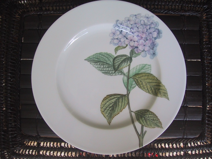 Hortensia hand painted on Limoges Porcelain/ Patricia Deroubaix (sur commande/special order) France