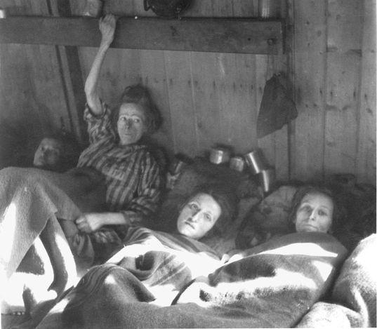 17 Best images about Bergen Belsen on Pinterest | Lower ...