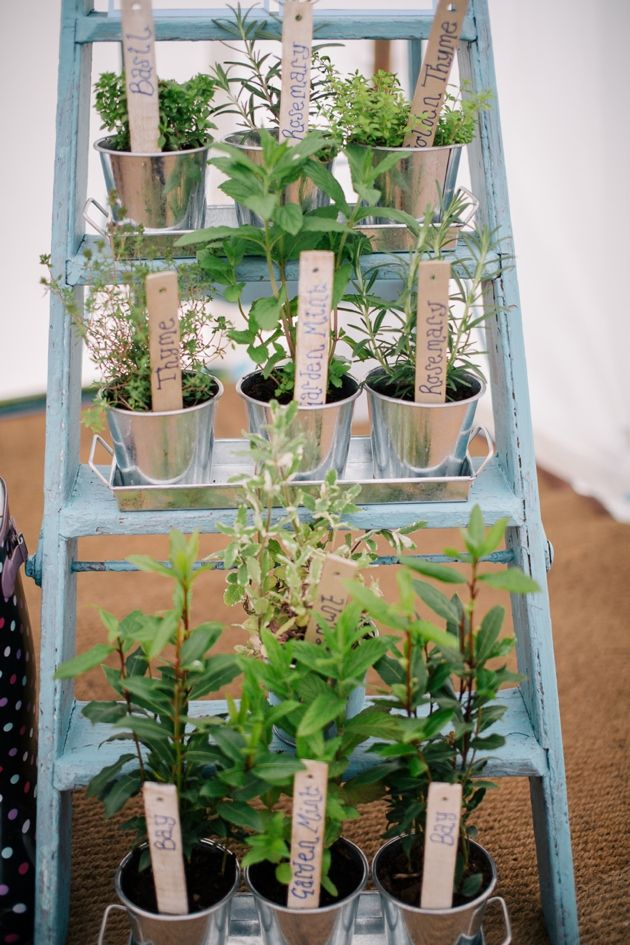 One of my fave DIY projects from today's wedding is this herb table plan - not only does it look good but I bet it smelt AMAZING too!   Cornflower Blue English Garden Wedding   Matt Bowen Photography