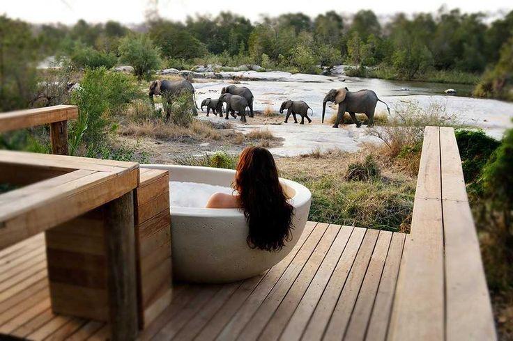 Krüger Park - Viktoria Fälle - Botswana - Londolozi | Londolozi Game Reserve
