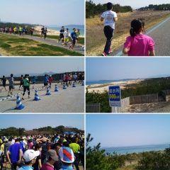 共栄火災スポーツフェスタ 第30回FM福岡海の中道 はるかぜマラソン大会に今日は子供二人の伴走で参戦です 今日の距離は10km 子供らは初めての距離でしたが目標タイムより速く完走できました  #福岡市東区 #海の中道海浜公園 #マラソン tags[福岡県]