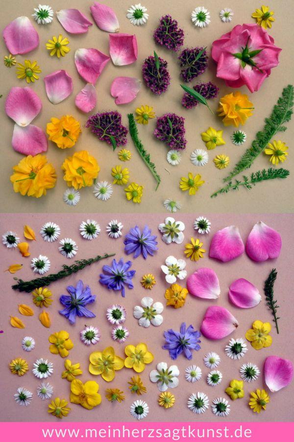 Blumen pressen – so wird es gemacht