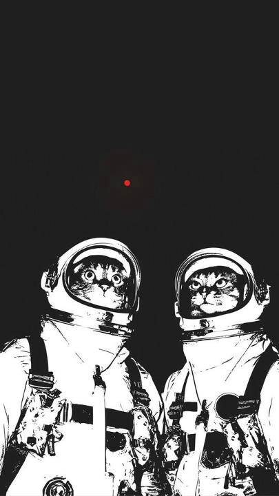 Astronaut cats.  Seeking the Red Dot no matter where it leads!