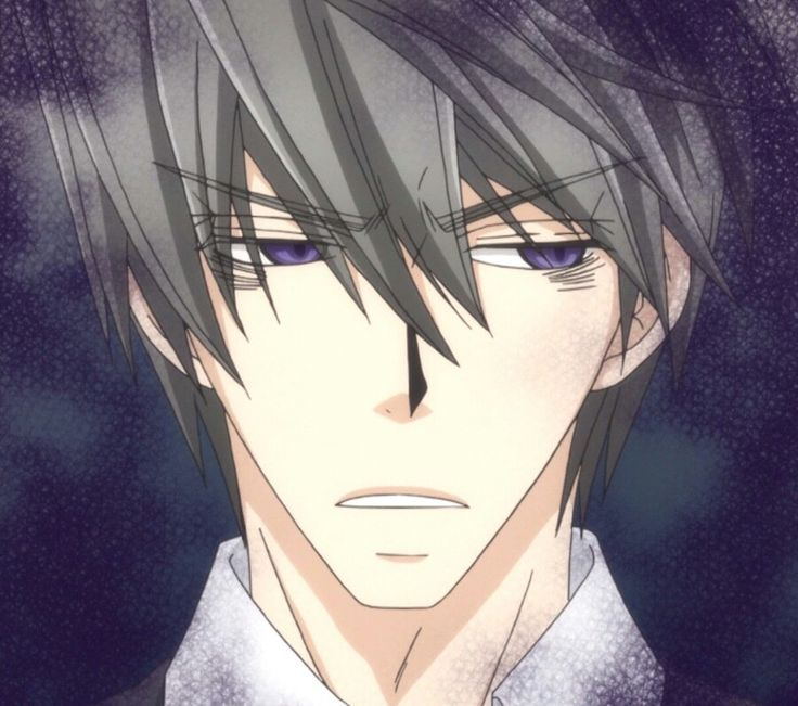 Junjou Romantica--wasn't really a fan of this type of ...
