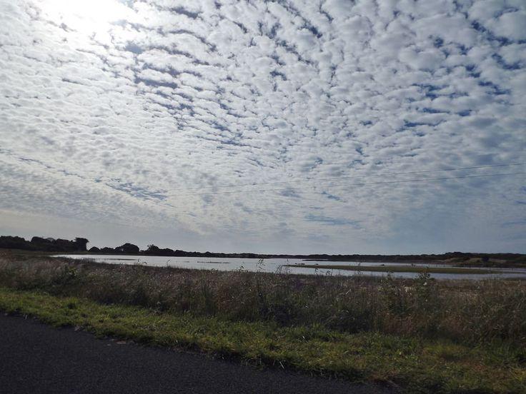 Killarney wetlands known as Sheedys Swamp. southwest Vic   by jinnyfawcett