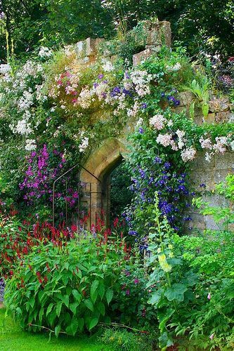 A secret garden Beautiful gorgeous pretty flowers