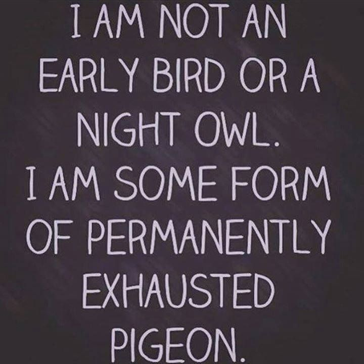 I'm a permanently exhausted pigeon :) #RelatableChronicIllness