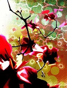Seoul Flower, Mixed Media by Lindsay Kokoska