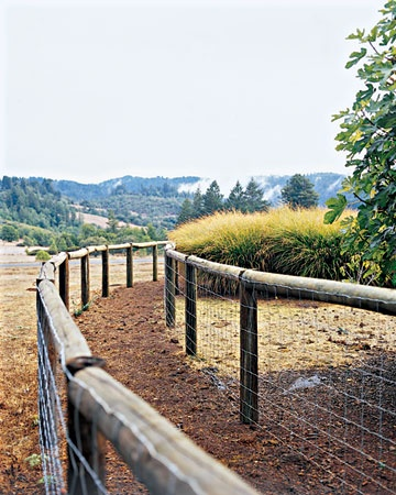 I NEED THIS!! A double fence to keep the deer out...I'm loving the wildlife...but the deer are eating everything.