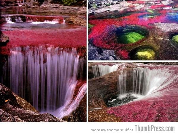 Canõ Cristales, Colombia