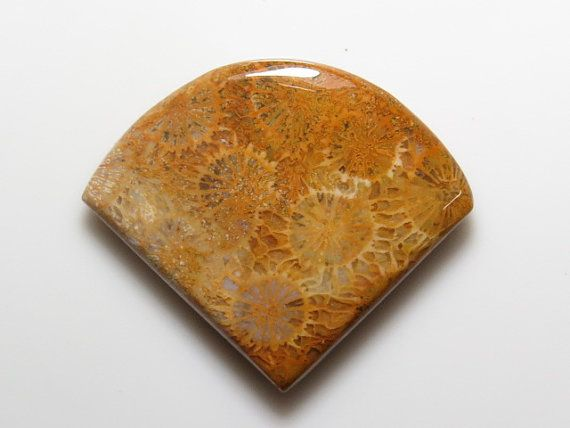 Fossil Coral - Fancy Shape Cabochon size  - 31x32 mm  - weight - 50.00 crt