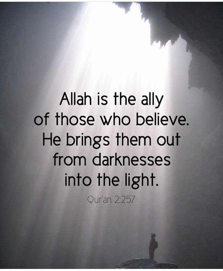 Allah is the Ally