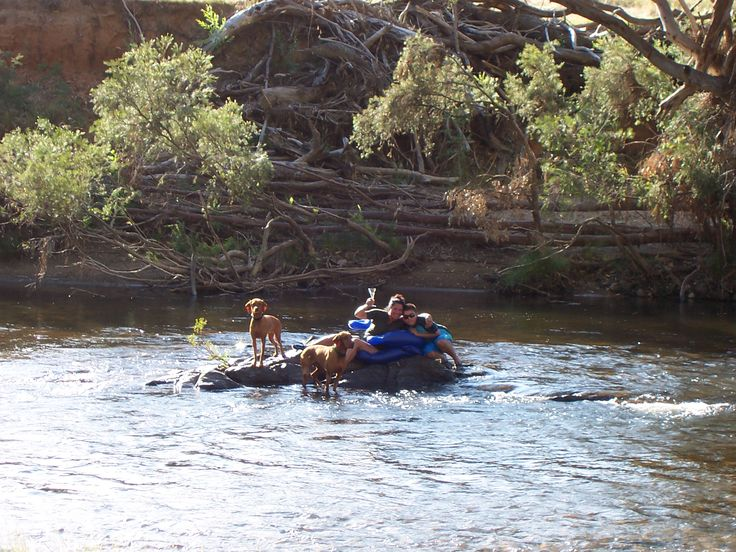The entire family enjoying time in the river