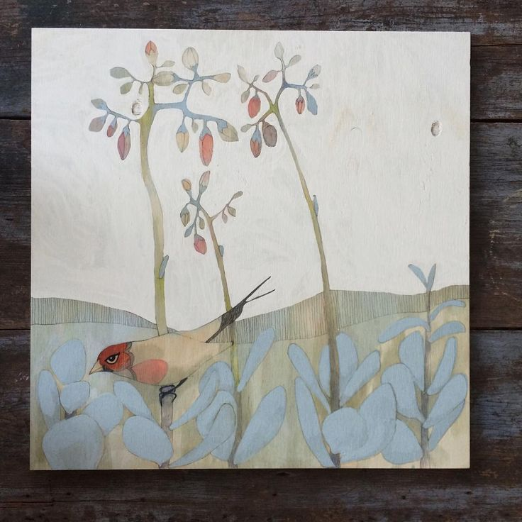 dana kinter- #gouldianfinch underway for @gatheredsa #wip #ticktock 60x60cm