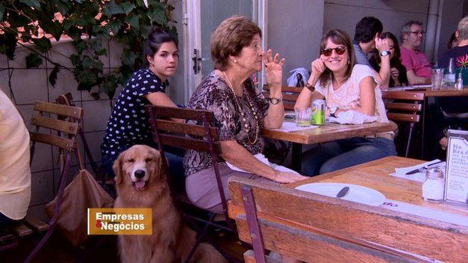 O último levantamento do IBGE mostrou que há mais cachorros que crianças nos lares brasileiros. De cada 100 famílias, 44 têm pets, enquanto 36 têm filhos de até 14 anos.