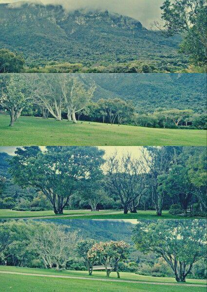 Beautiful View At Kirstenbosch Botanical Gardens In Cape Town.