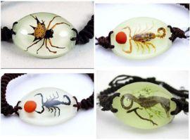 armbanden en kettingen met insect