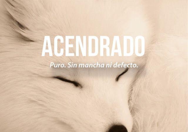 Bendito Ocio: Las 25 Palabras más Bonitas del Idioma Español ¿Cuál de Todas es tu Preferida?