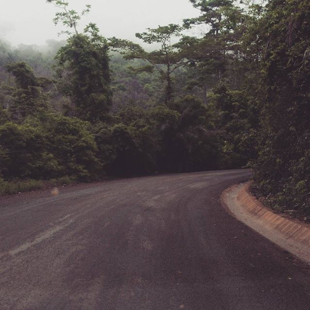 All I was thinking was, this road would be awesome to race on.  Only thing is losers will probably not make it back alive 😢. The #Aburi hill passes are steep, narrow and winding.  This road has been expanded into the hillside but I still won't recommend more than 50 on it