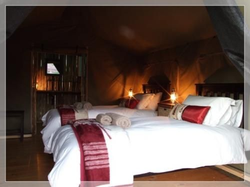 Agama Tented Camp, Bed & Breakfast in the Northern Cape, Namakwa  'image forward tap option, is on'> to visit www.bookinsa.com - SA Tourism related businesses list at NO CHARGE *  You are welcome *