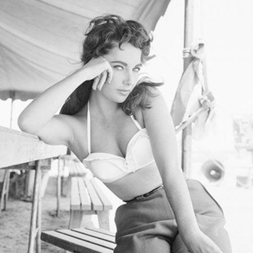Elizabeth Taylor: Classic Beauty, Elizabeth Taylors, Vintage, Elizabethtaylor, Beauty People, Styles, Liztaylor, Liz Taylors, Photography