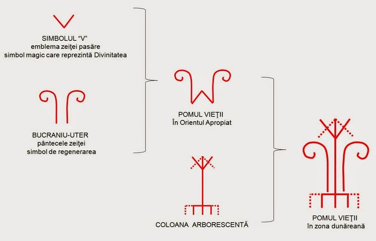 Încă din neoliticul european, pentru amplificarea semnificaţiei magico-mitoloică, au fost grupate DOUĂ SIMBOLURI de regenerare: V-ul Marii Zeiţe şi bucraniul-uter. La începutul mileniului I î.e.n., grupul format din cele două simboluri era deja considerat POMUL VIEŢII în Orientul Apropiat.